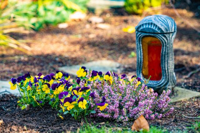 Dove trovare i migliori fiori funebri