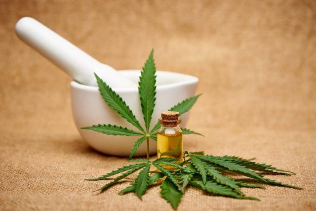 Dalla cannabis light proprietà interessanti per il benessere